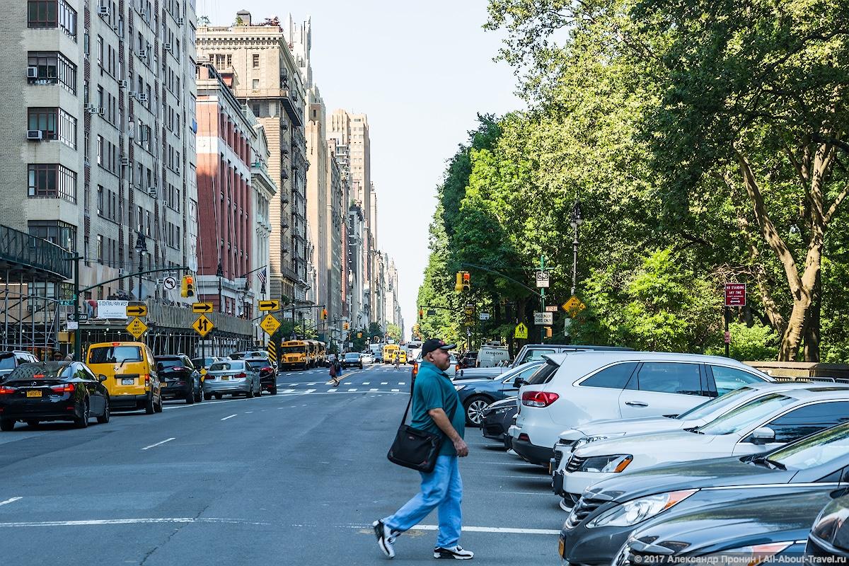 27 New York Central Park - Первый раз в Нью-Йорке: Таймс-Сквер, Центральный парк и Чайнатаун