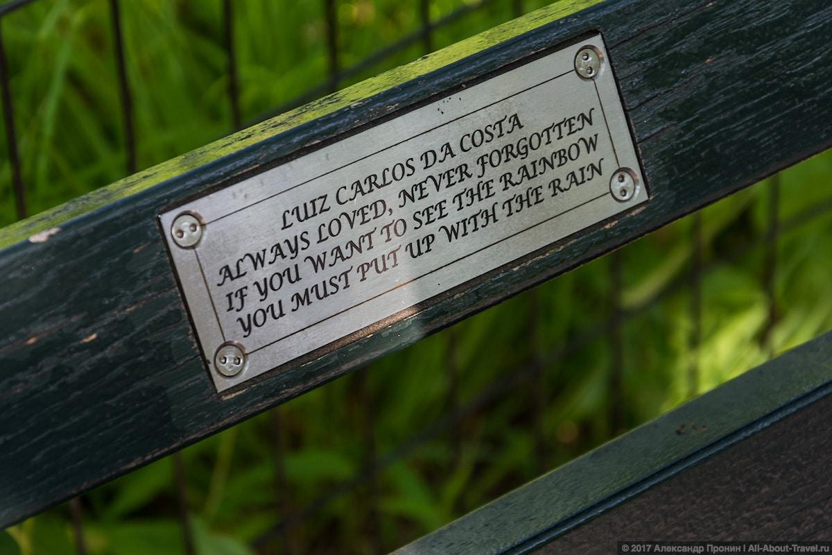 34 New York Central Park - Первый раз в Нью-Йорке: Таймс-Сквер, Центральный парк и Чайнатаун
