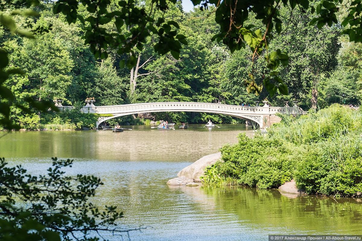 36 New York Central Park - Первый раз в Нью-Йорке: Таймс-Сквер, Центральный парк и Чайнатаун