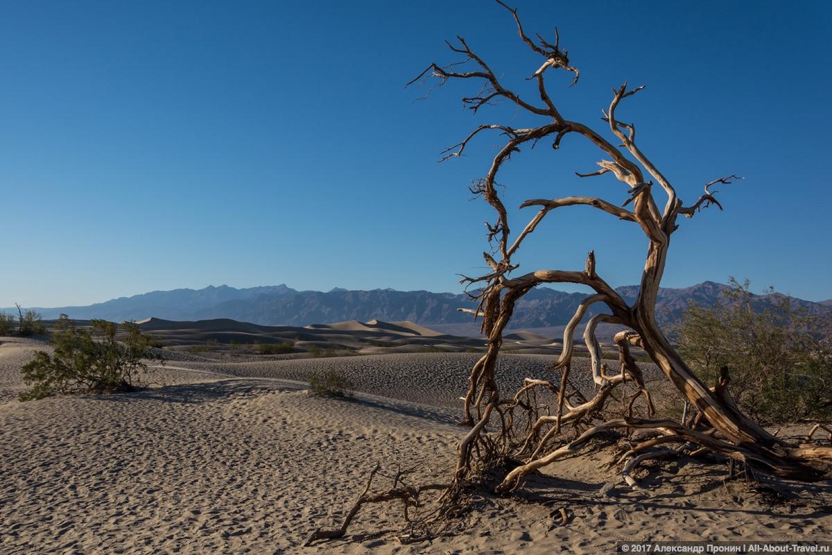 40 Las Vegas Death Valley - Долина Смерти - место, где можно умереть!