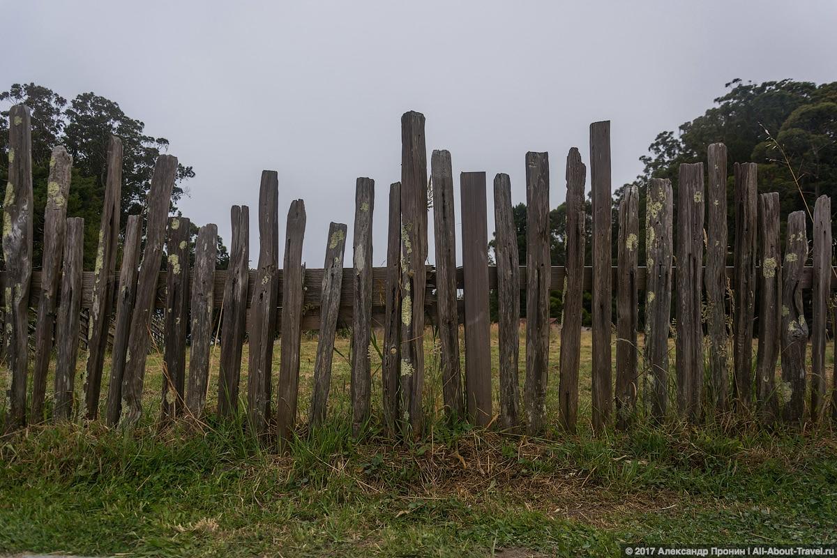 San Frantsisko Fort Ross 46 - Едем в Форт-Росс - колонию Российской империи в США