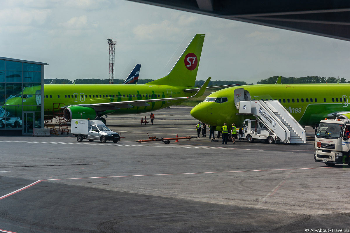 S7 Airlines Отзыв о перелете, наш опыт