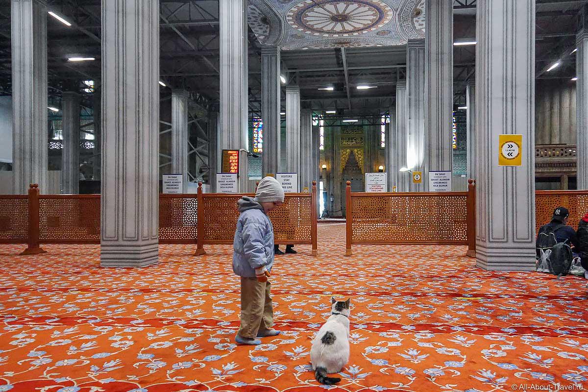 Стамбул - Голубая мечеть - мечеть Султанахмет
