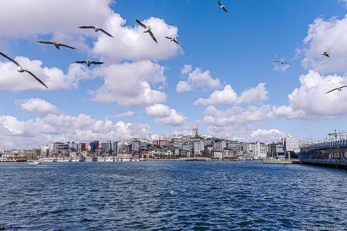 Стамбул - Вид на Галатскую башню через бухту Золотой Рог